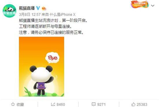 三足鼎立到两雄相争 熊猫直播到底经历了什么?