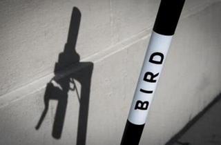 传共享电动滑板车公司Bird寻3亿美元融资
