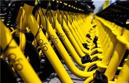 ofo进行了第五次公司的搬迁 但仍有超1500万用户待退押金