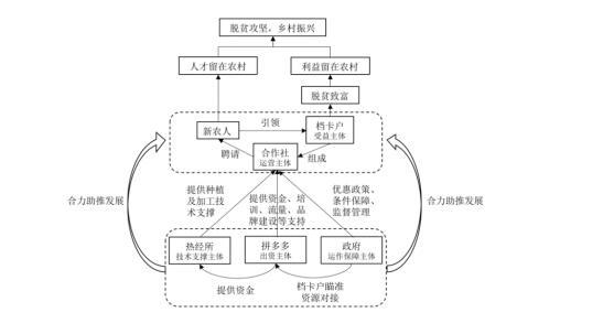 《2019中国电商兴农发展报告》发布 拼多多等平台助力农产品上行