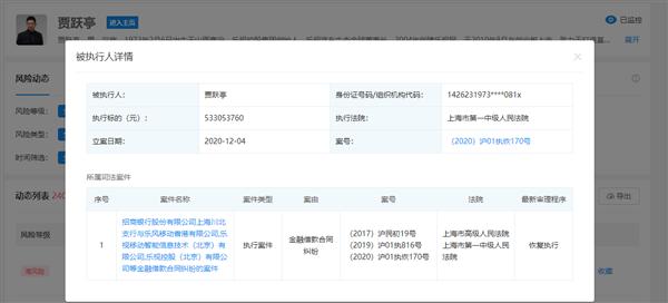 贾跃亭再成被执行人:执行标的5.33亿元