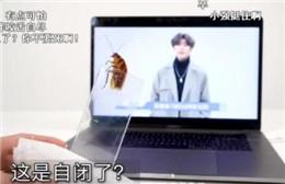 B站交锋蔡徐坤 网络娱乐还是网络暴力?