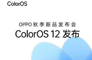 刘作虎:ColorOS 12可能是国产定制系统的最优解